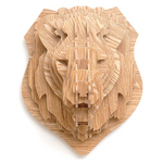 Tete de lion decoration.