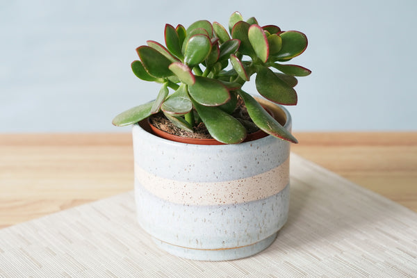 Large Planter in Periwinkle & White Stripe ~ 5.75""