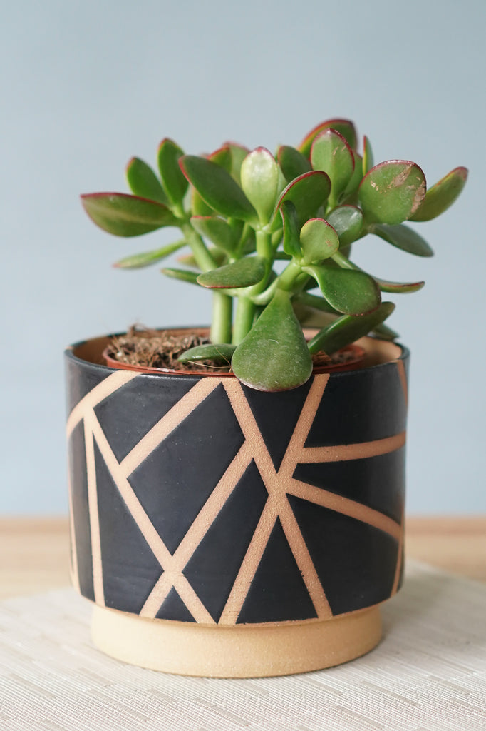 Large Modern Geometric Planter in Satin Black ~ 6""