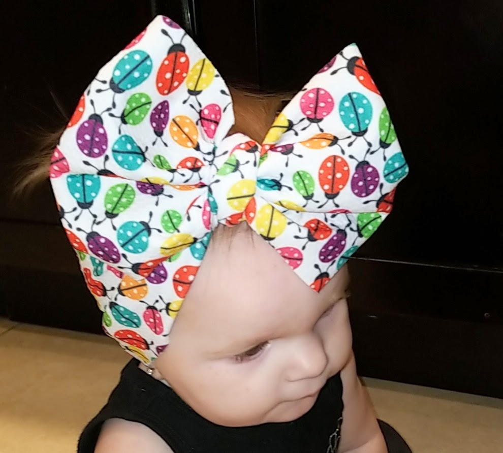 Ashley Ladybug Bow