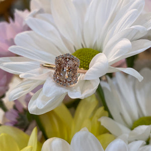 Vintage Style Oval Morganite Ring in Rose Gold