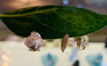 Load image into Gallery viewer, Scallop Shell Stud Earrings