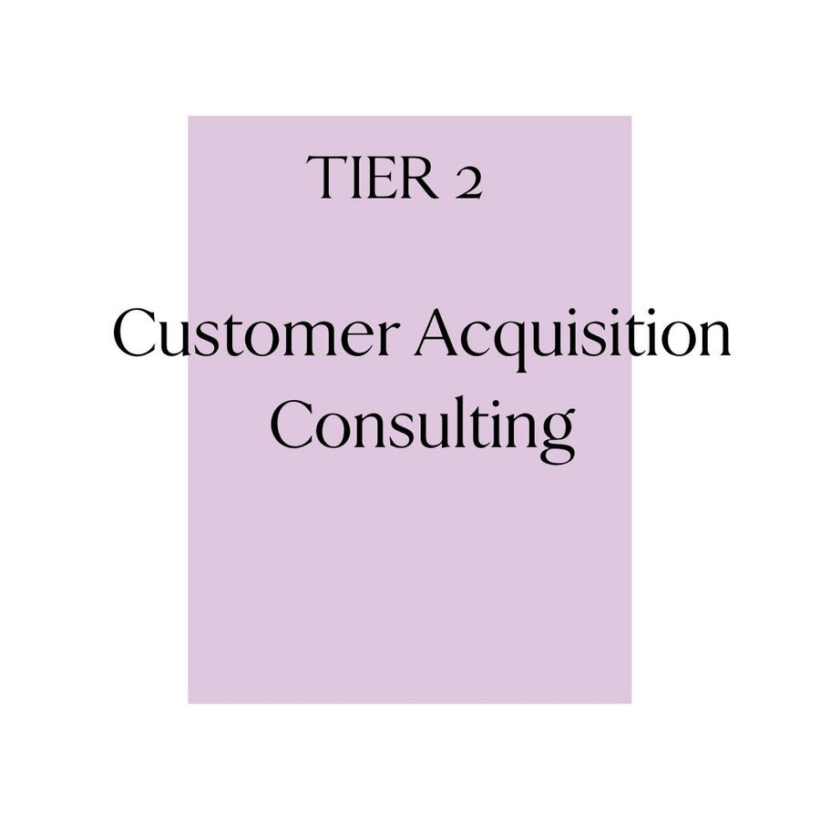 Tier 2: On Demand Customer Acquisition Consulting