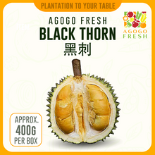 Load image into Gallery viewer, Durian Black Thorn 黑刺