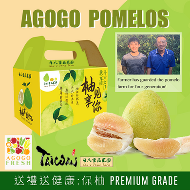 [Mid-Autumn Festival] TAIWAN Pomelo (保柚) Gift Box! (Group Buy 20 boxes)