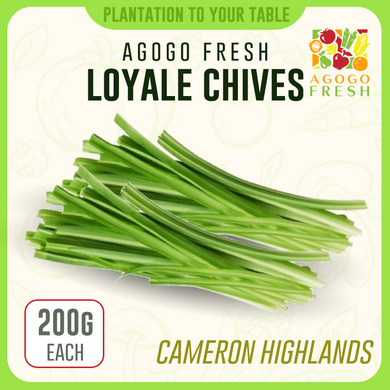 Loyale Chives