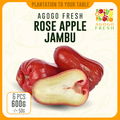 Rose Apple Jambu 大金刚