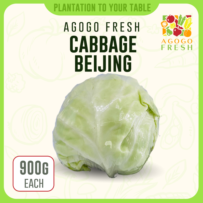 Cabbage Beijing
