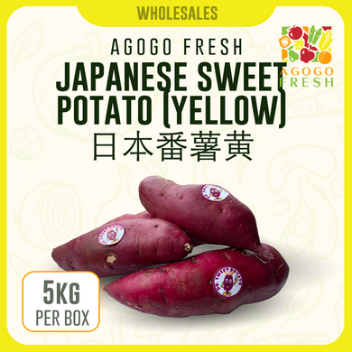 Japanese Sweet Potato (yellow) 日本番薯黄 (5kg)