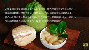 [PROMOTION] TAIWAN Pomelo (保柚) Gift Box!