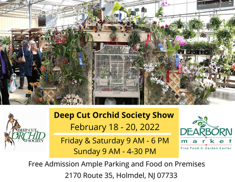 Deep Cut Orchid Society 2022 Orchid Show