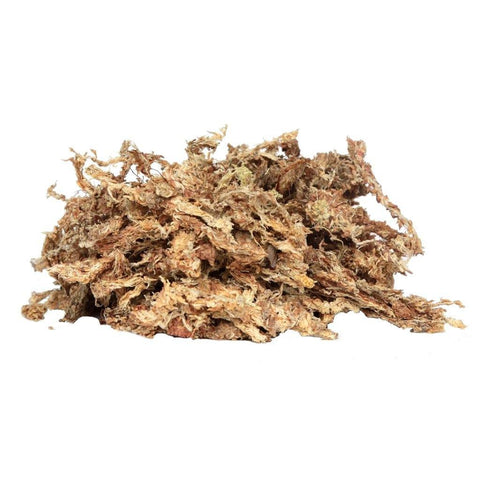 Orchid Nerd ™ Compressed Sphagnum Moss - Waldor Orchids