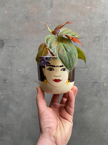 Frida Kahlo Pot