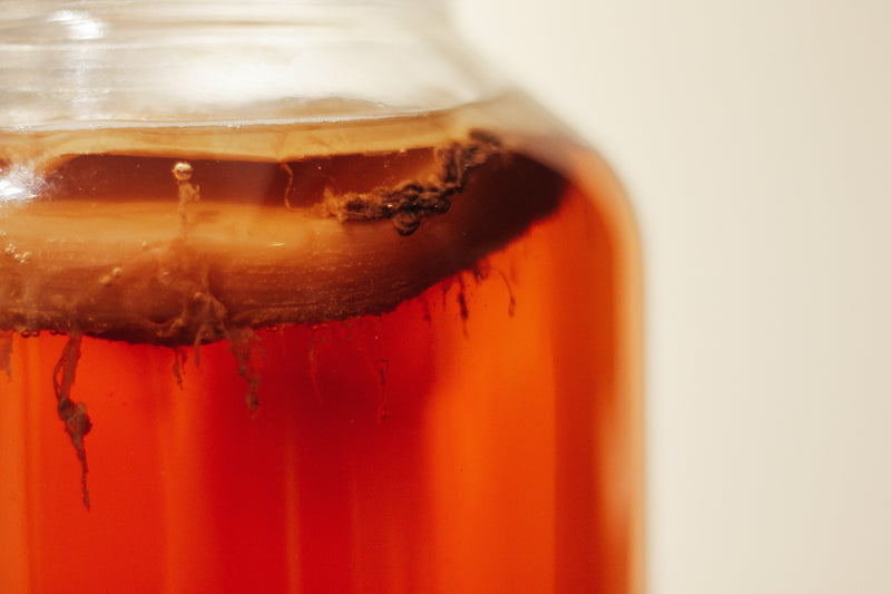 Get the Scoop on Kombucha and Why Wellness Advocates Love it!