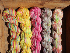 Mini Skein Pugh 4ply