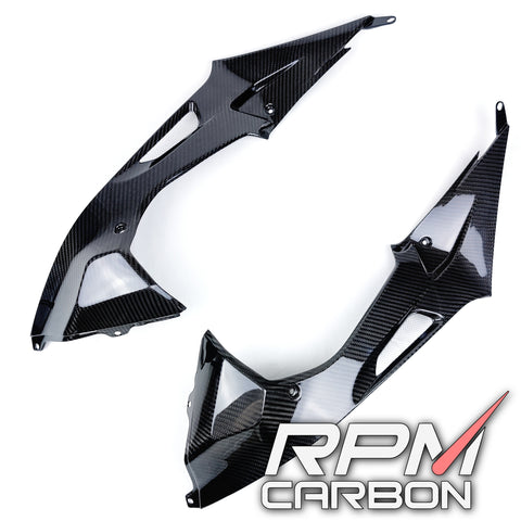 BMW S1000RR HP4 Carbon Fiber Tank Side Panels Carbon Fiber