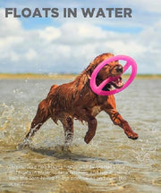 Outward Hound Bionic Toss-N-Tug Dog Toy - Pet Mall