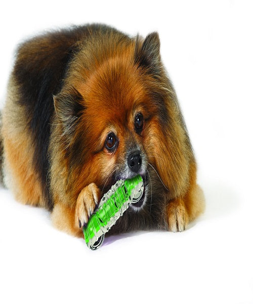 Petstages Crunchcore Dog Toy - Pet Mall