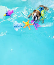 Outward Hound Floatiez Narwhal Dog Toy - Pet Mall