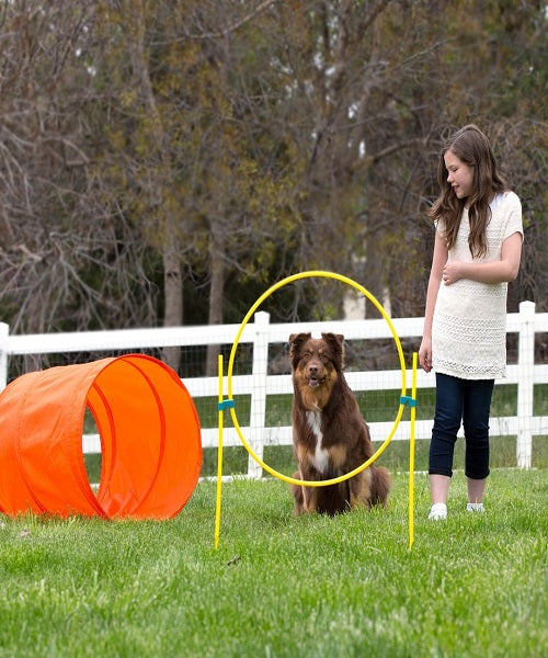 Outward Hound Zip & Zoom Outdoor Dog Agility Kit - Pet Mall