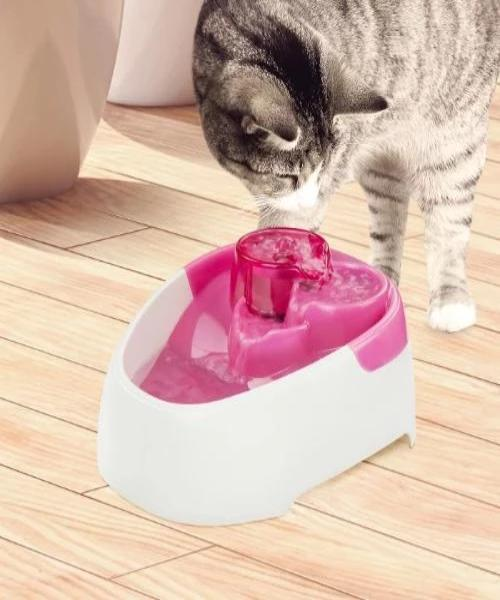 All For Paws Modern Cat Drinking Fountain - Pet Mall