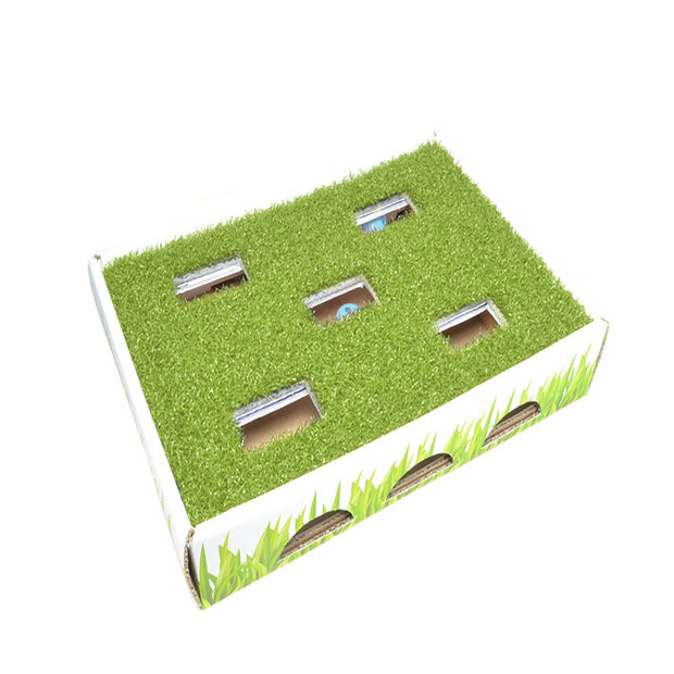 Petstages Grass Patch Hunting Box Cat Scratcher - Pet Mall