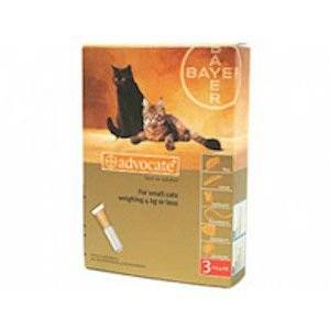 ADVOCATE SMALL CAT (3X0.4ML) 1-4KG WORM TREATMENT - Pet Mall