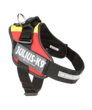 Julius K-9 & IDC Harness - Pet Mall