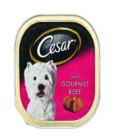 CESAR -WET DOG FOOD - Tray of 24pcs x 100g - Gourmet Beef - Pet Mall
