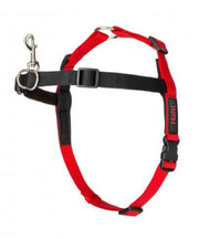Halti Front Control Harness for Dogs