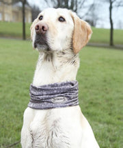 Scruffs Insect Shield Dog Snood - Pet Mall