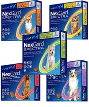 NEXGARD SPECTRA SMALL 3.6-7.5KG (1G) - Pet Mall