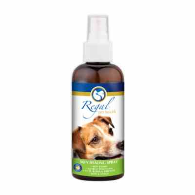 REGAL SKIN HEALING SPRAY 200ML - Pet Mall