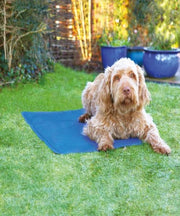 Rosewood Chillax Cool Pad - Cooling Dog Mat - Pet Mall