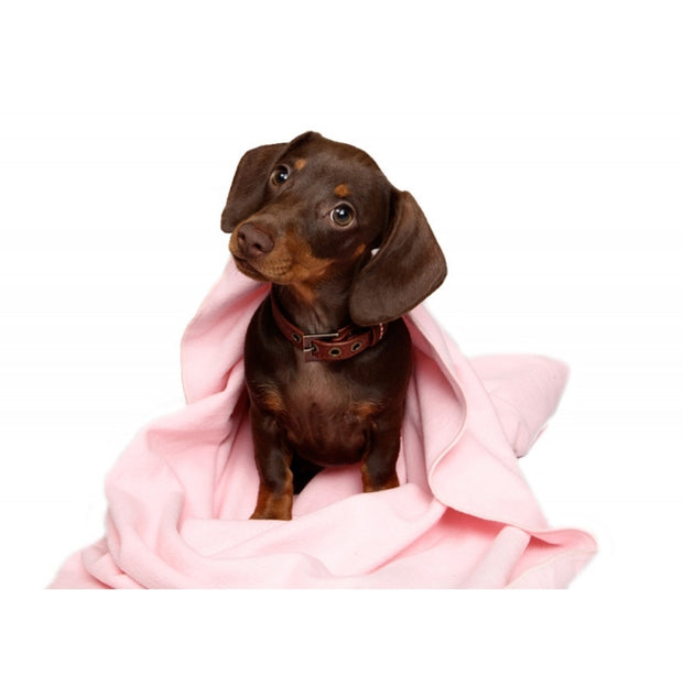 Wagworld Fleece Blanket for Dogs & Cats - Various Colours - Pet Mall