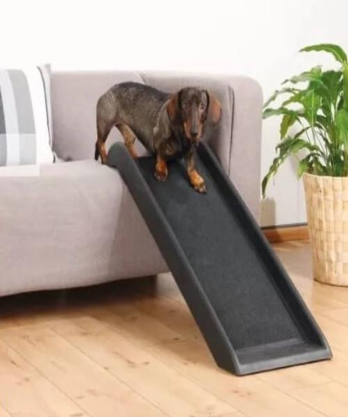 Cosmic Pets Folded Plastic Pet Ramp - Pet Mall