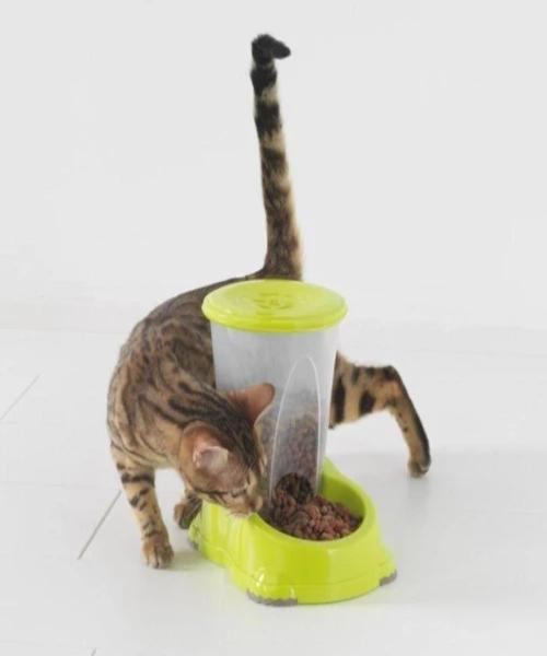 Moderna Smart Snacker Drink & Food Pet Dispenser - Pet Mall