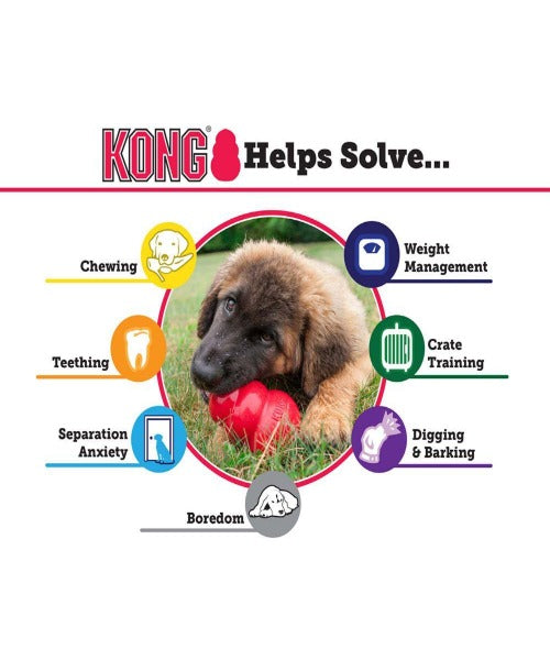 Kong Classic Treat Dog Toy - Pet Mall