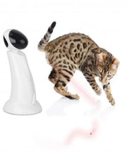 All For Paws Interactive Laser Beam Cat Toy - Pet Mall