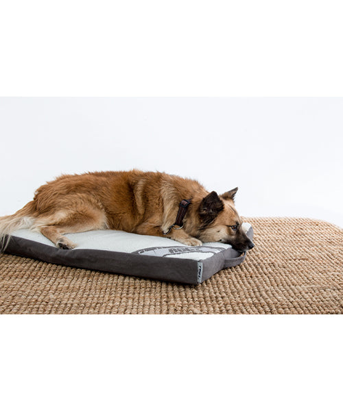 Rogz Flat Lounge Pod Dog Bed - Pet Mall