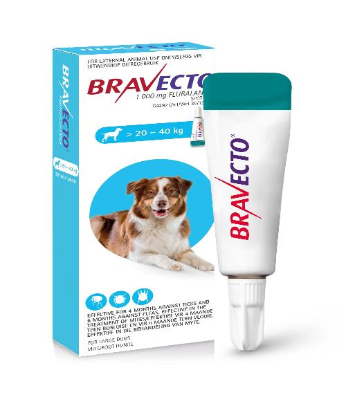 Bravecto Spot On Tick & Flea Treatment for Large  Dogs (>20-40KG) 1000MG - Pet Mall