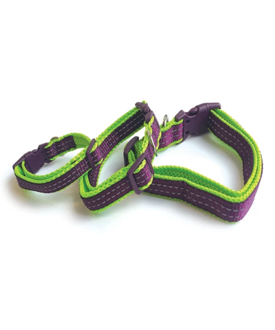 M-PETS Comfort Dog Collar - Pet Mall