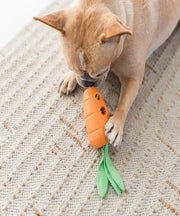 Petstages Carrot Stuffer Dog Toy - Pet Mall