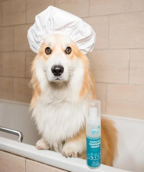 Hownd PLAYFUL PUP NATURAL CONDITIONING SHAMPOO - Pet Mall