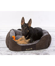 Scruffs Chester Box Bed - Pet Mall