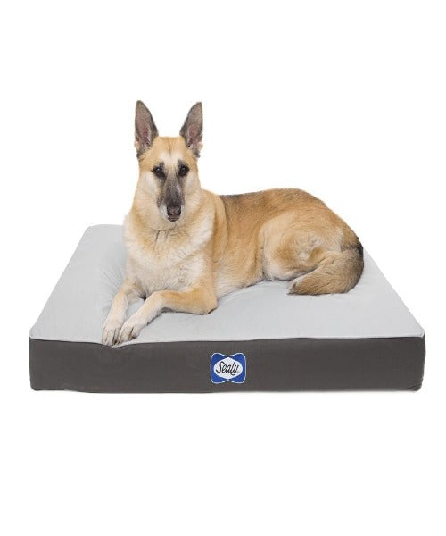 Sealy Defender Water Resistant Orthopedic Dog Bed