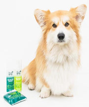 Hownd YUP YOU STINK! CONDITIONING SHAMPOO - Pet Mall