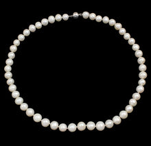 Load image into Gallery viewer, Classic 8-9mm White Pearl Necklace