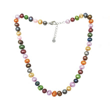 Load image into Gallery viewer, Multicolor pearl necklace