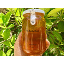 Raw Citrus Honey 500g
